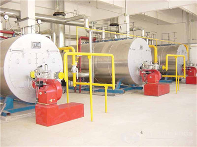 dzl packaged biomass steam boiler – environmental expert