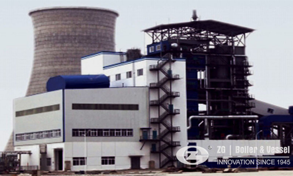 Biomass fired power plant boiler